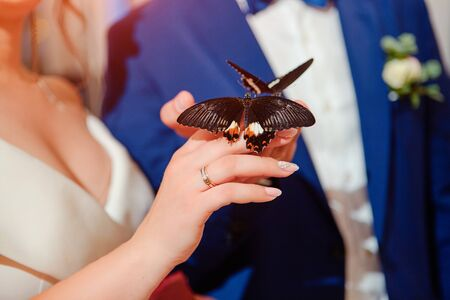 The bride and groom received a gift box with live butterflies.