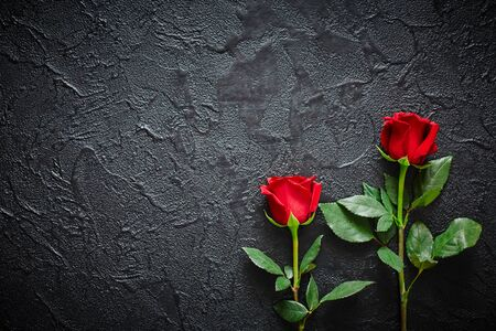 Two red roses on a dark, black stone background. Place for text. Imagens