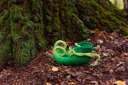 Fairy creature elf or dwarf will leave his shoes near the entrance to his house in an old, moss-covered tree Imagens