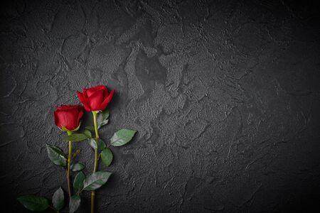 Zwei rote Rosen auf einem dunklen, schwarzen strukturierten Hintergrund. Platz für Text