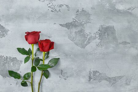 Red roses lie on a textured light background. Space for your text.