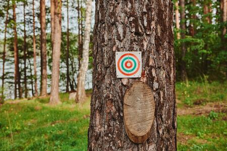 Paper and wood target on the tree for games and shooting training. Zdjęcie Seryjne
