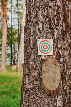 Paper and wood target on the tree for games and shooting training. 版權商用圖片