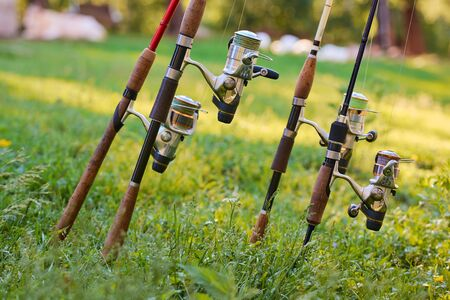 Various fishing rods and reels on the background of green grass