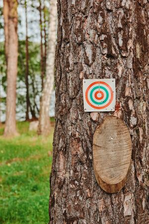 Paper and wood target on the tree for games and shooting training. Imagens