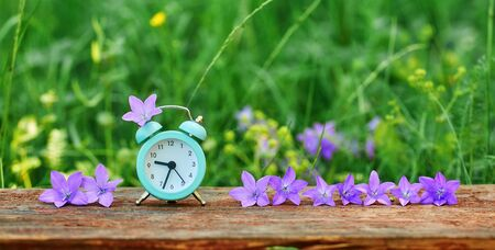 The concept of daylight saving time. Web banner of alarm clock and lilac meadow flowers in the grass.