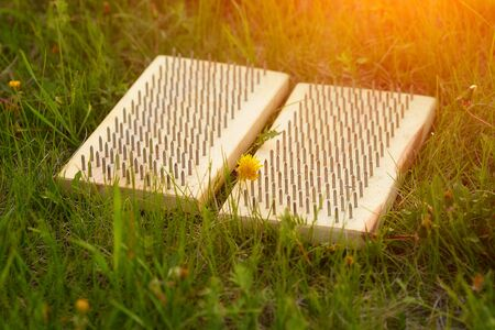 Close-up of a Board with nails on the green grass, for the practice of sadha yoga. Stock Photo
