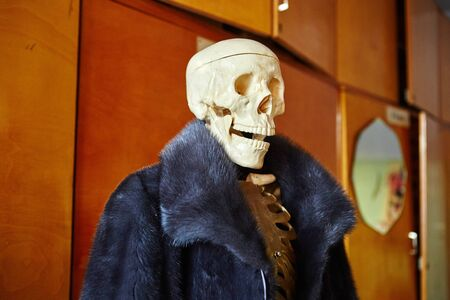 Skeleton of a man in a fur coat made of natural animal fur. Concept of Halloween, environmental protection.