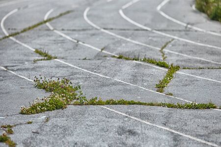 An old Park asphalt running track with markings and grass that grows through the cracks. Outdoor treadmill. Selective focus. The concept of decline, destruction, and poverty. Standard-Bild