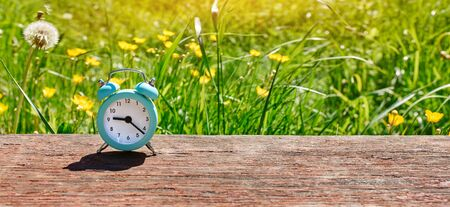 Concept of summer time. Web banner of an alarm clock on a background of dandelion flowers in a Sunny lawn. Stock Photo