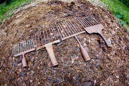 A set of ancient poaching tools for fishing - hooks and forks. Standard-Bild