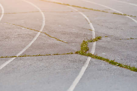 An old Park asphalt running track with markings and grass that grows through the cracks. Outdoor treadmill. Selective focus. The concept of decline, destruction, and poverty.