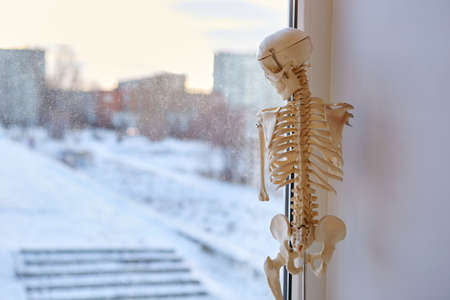 A close up shot of a human body a skeleton a figure standing in the corner of a white window frame looking sadly out on the street at the living life. It is broken and no one needs it. The concept of depression, loneliness.
