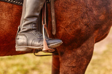 Detailed view of the black boot of the rider with spurs and stirrups.
