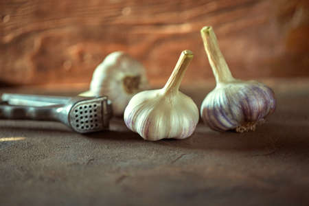 Three ripe heads of fresh garlic lie next to the garlic chopper on a dark wooden background. Folk medicine for viral and colds.