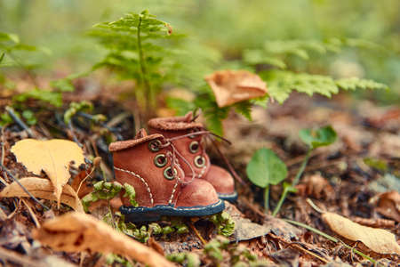A pair of toy leather shoes stand in the autumn forest .. 免版税图像