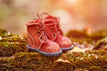Cute handmade leather shoes for a fabulous creature stand in the woods