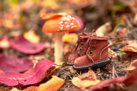 Cute handmade leather shoes for a fabulous creature stand in the woods.