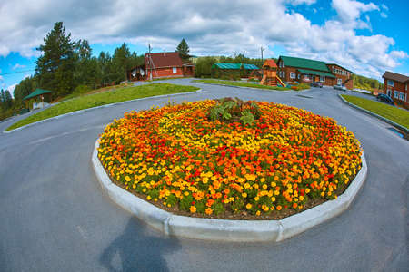 Beautiful round flower bed with marigolds, fisheye lens photography