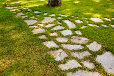 The Stone block walk path in the park with green grass background.