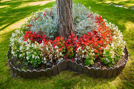 Heart-shaped flower garden in a public Park. Many flowers planted in the shape of a heart. Symbol of love in the Park
