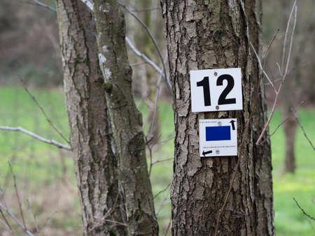 twelve: Milestone twelve at the hiking trail