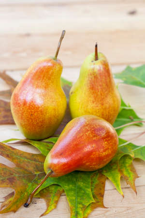 juicy: Red pears and autumn yellow maple leaves on a wooden table, close up, selective focus