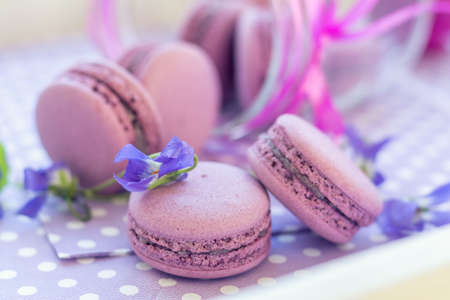 Violet sweet delicious macaroons and fresh violas on napkin polka dot. Shallow depth of field. Coloring toned photo. Stock Photo