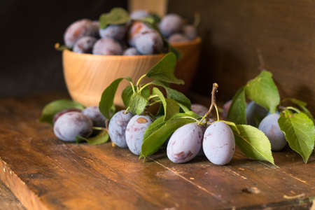 Fresh plums with green leaves in wooden pot on the dark wooden table. Shallow depth of field. Toned.