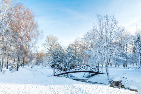 First snow in the city park with trees under fresh snow at sunrise. Bridge on a sunny day in the winter city park. Stock Photo - 93070091