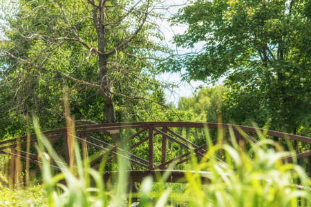Summer footpath in the city park with a bridge on a sunny day Stock Photo - 93140340
