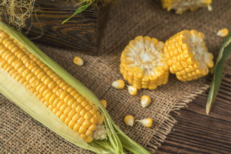 Fresh corn on cobs on rustic wooden table, top view. Dark wooden background freshly harvested organic corn. Stock Photo