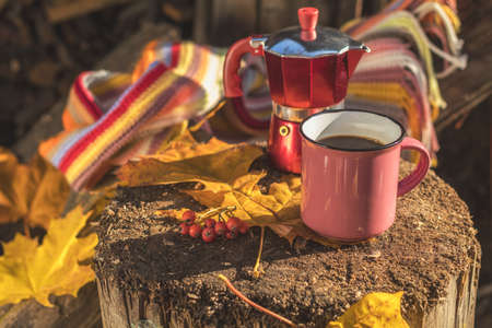 Multicolored scarf, cup of coffee, red coffee maker, yellow maple and oak leaves on the wooden board. Bright autumn background. Sunlight, copy space. Stock Photo