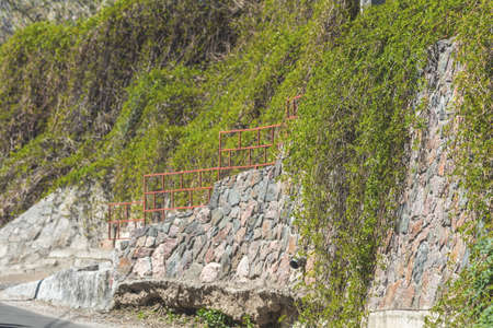 Stone wall or fence with wild grapes. Vintage wall with natural floral frame. Wild grape on the wall of an old building wall as background. Stock Photo - 101118133