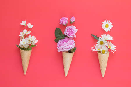 Waffle cone with pink roses, chamomiles and jasmine flowers bouquet on pink background. Flat lay, top view floral background.