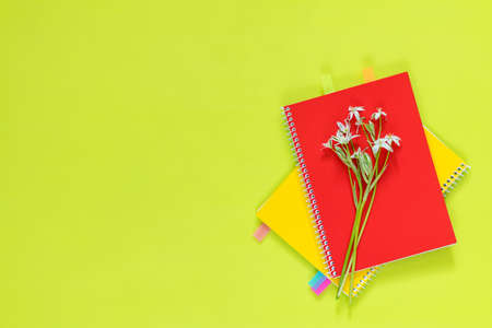 Many blossom flower heads ornithogalum and red and yellow notebooks with bouquet on bright green surface. Stock Photo