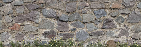 Stone walling with chamomile. Granite beautiful art panorama background.
