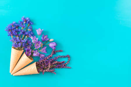 Three waffle cones with thyme, cornflower, blue bells and white flowers blossom bouquets on blue surface. Flat lay, top view floral background. Stock Photo