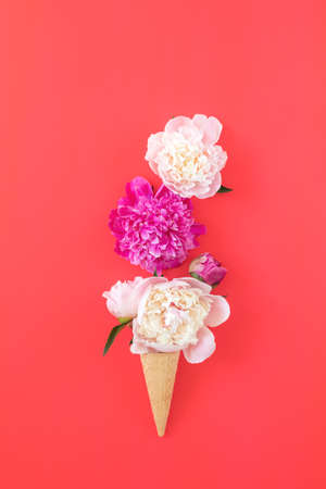 Waffle cone with white and pink peonies flower bouquet on pink red background Stock Photo - 102826680