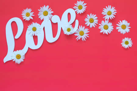White letters forming word LOVE written with chamomile flowers on pink background. St. Valentine's Day, wedding holiday concept. Stock Photo - 102826686
