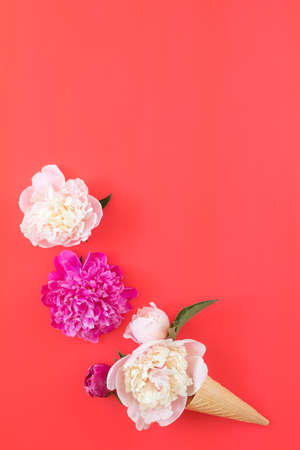 Waffle cone with white and pink peonies flower bouquet on pink red background