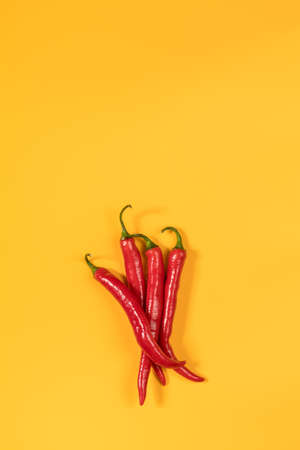Four red hot chili pepper on yellow surface. Beautiful minimalist food art background. Top view, copy space.