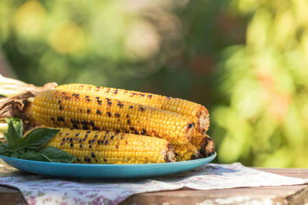 Corn baked in olive oil, with pepper, salt and basil on blue dish. Tasty grilled corn cobs on old table in the open air. Vegetarian, vegan menu