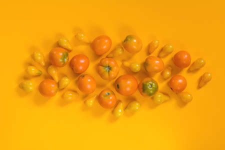 Many different orange yellow tomatoes on yellow surface.  Beautiful food art background, top view. Stock Photo