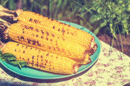 Corn baked in olive oil, with pepper, salt and basil on blue dish. Tasty grilled corn cobs on old table in the open air. Stock Photo - 107593826