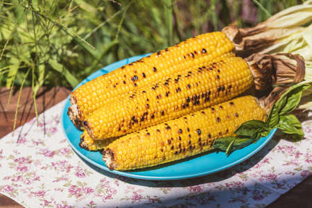 Corn baked in olive oil, with pepper, salt and basil on blue dish. Tasty grilled corn cobs on old table in the open air. Stock Photo