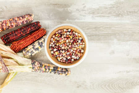 Cheerful and Colorful dried Indian Corn on light wooden surface as decoration for Thanksgiving Table, Halloween, and the Fall Season. Stock Photo