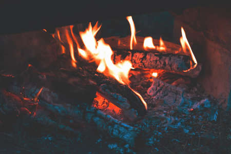 Charred wood in the fire. Burning wood in bright flames in the dark, close up. Toned dark fire background.