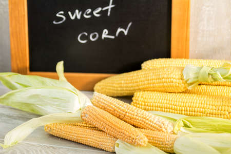 Sweet Corn with black desk as decoration for Thanksgiving Table, Halloween, and the Fall Season. Beautiful food art background Stock Photo