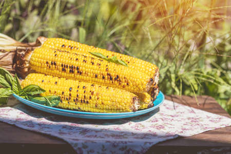 Corn baked in olive oil, with pepper, salt and basil on blue dish. Tasty grilled corn cobs on old table in the open air. Stock Photo - 109230226